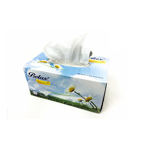 Facial Belux® Tissue Box 2Ply (50 Boxes x 200 Sheets)